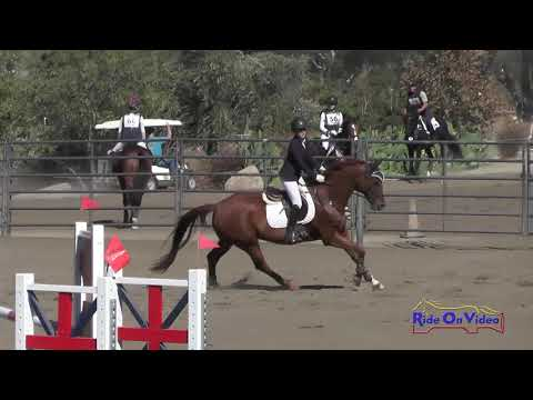 167S Ally McGlynn on De Mello JR Training  Jumping Galway Downs Nov. 2017