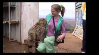 Funny Monkey Breastfeeding Girl