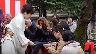 الشاي الأخضر الياباني.. من الإقطاعيين لعامة الشعب