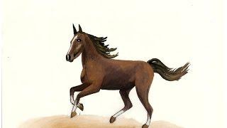"""Martin Walser: """"Ein fliehendes Pferd"""" / Eine Buchbesprechung"""
