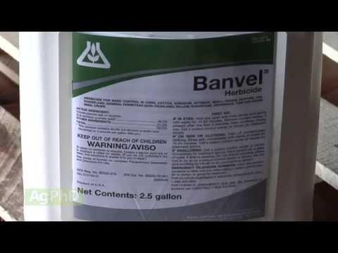 Banvel & 2 4 D #862 (Air Date 10/12/14)