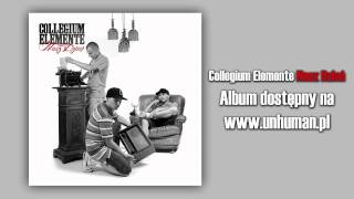 10. Collegium Elemente - Póki trwa nasz dzień feat. Kubiszew | skrecz Dj Sab, bit Sherlock