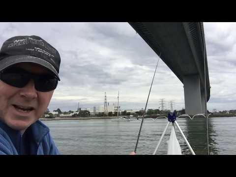 Fishing The Westgate Bridge For Plenty Of Fish