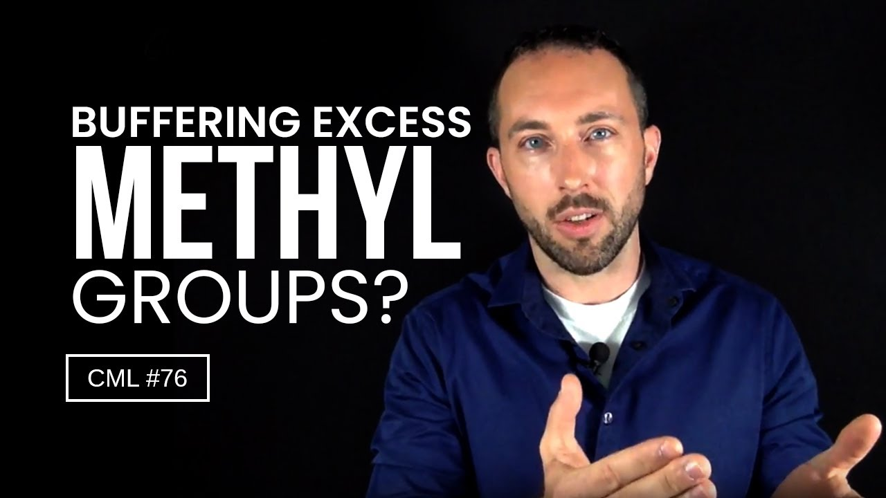 DON'T Use Niacin to Buffer Excess Methyl Groups | Chris