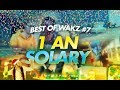 BEST OF ULTIME WAKZ #7 : 1 AN SOLARY