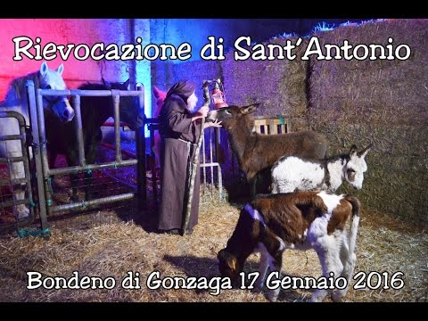 SANT'ANTONIO ABATE RIEVOCAZIONE STORICA A BONDENO DI GONZAGA