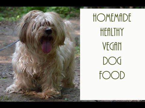 HOMEMADE  ( DIY )  VEGAN DOG FOOD!