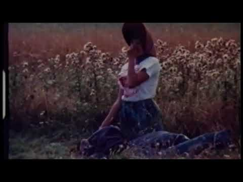 THE BIONIC BLUNDERS-Zoë Lewis
