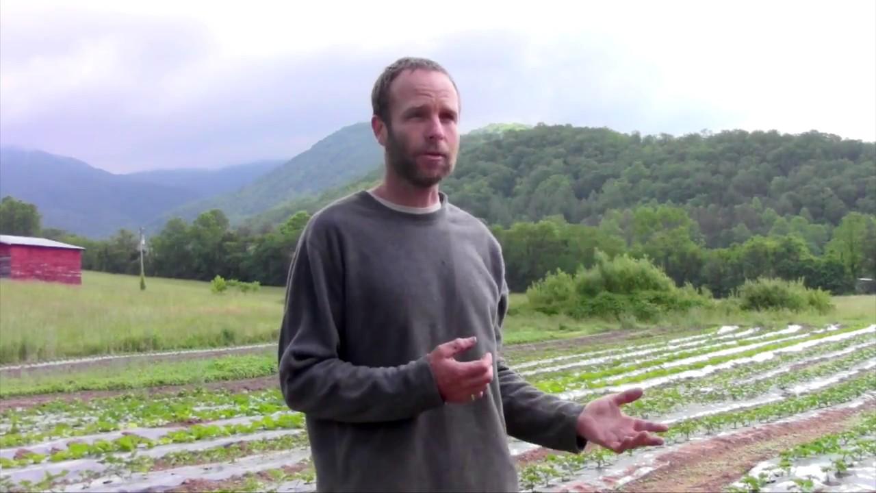 Ivy Creek Family Farm Youtube