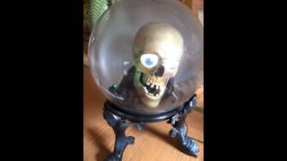 talking halloween skeleton skull head
