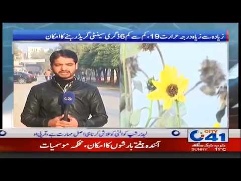 Faisalabad Weather Update | 8 Jan 2019 | City 41