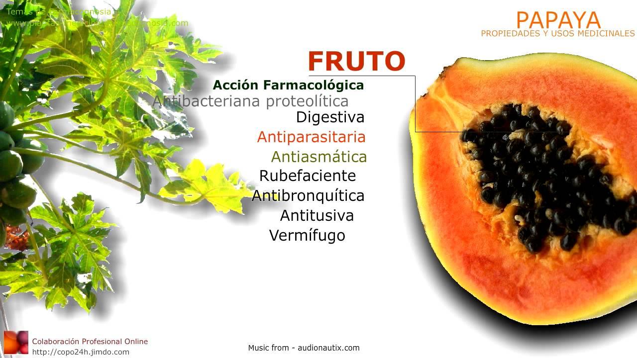 propiedades medicinales de solfa syllable papaia pdf
