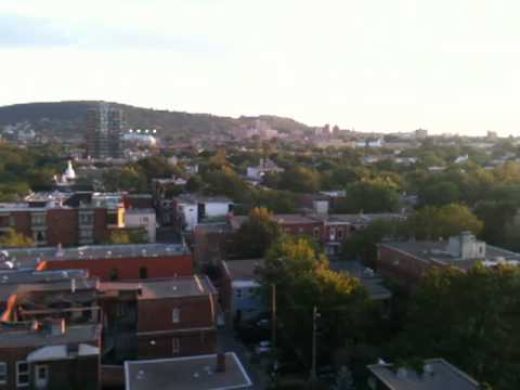 montreal balcony - view of parc la fontaine, mountain, plateau, & the north