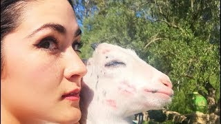 Isabelle Fuhrman - animal compilation #10
