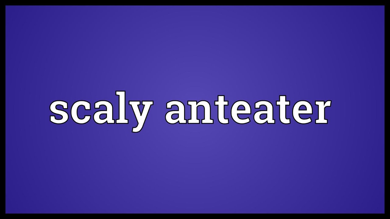 Scaly anteater Meaning - YouTube