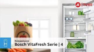 Обзор холодильника Bosch VitaFresh Serie | 4 KGN39XL2AR