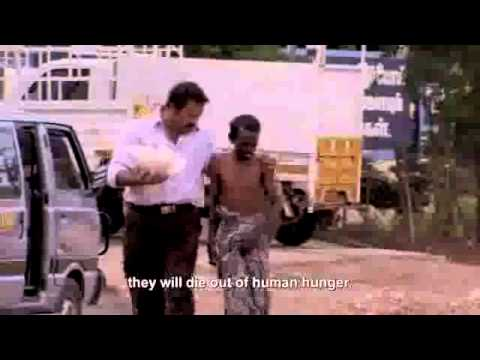 CNN - Feeding the Hungry