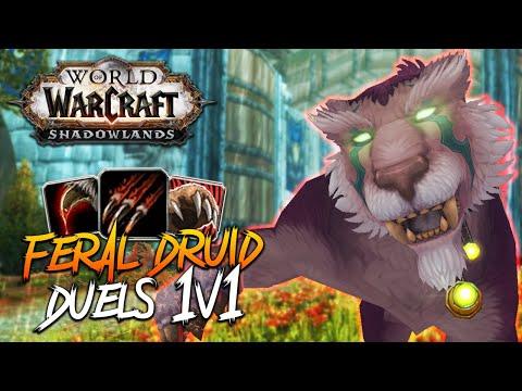 FERAL DRUID DUELS!!! Feral Druid PvP - WoW: Shadowlands 9.0 Prepatch 1v1