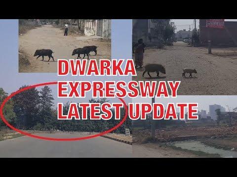 New Palam Vihar Latest Demolitation, Still NO End-to-End Connectivity on #DwarkaExpressway