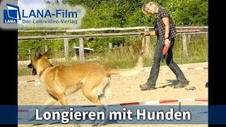 Longieren Mit Hunden Nach Hundeteamschule (dvd Lehrvideo)