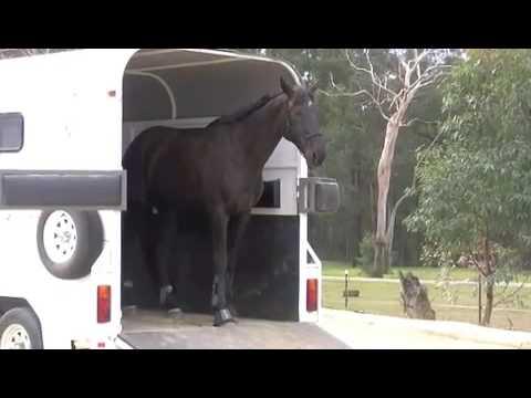 Horsemanship Australia