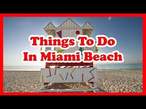 5 Best Things To Do In Miami Beach, Florida | US Travel Guide