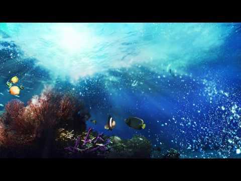Relaxing Music for Stress Relief  Healing Music for Meditation, et Massage, Spa