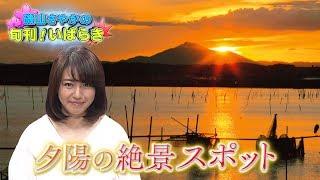 今回の「磯山さやかの旬刊!いばらき」(前10時20分ごろ)では、磯...
