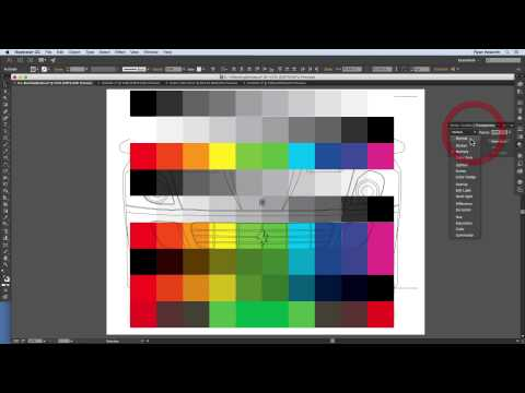 How To Use Color and Appearance in Illustrator - Module 6.1