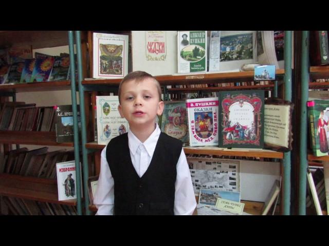 Изображение предпросмотра прочтения – ВадимКалинкин читает произведение «Таврида» А.С.Пушкина