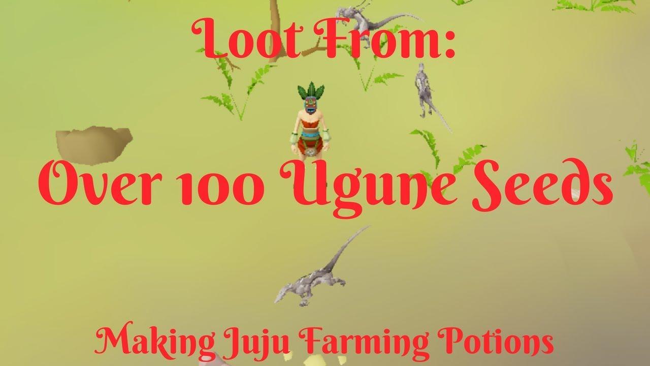 Loot From 100 Ugune Seeds Making Juju Farming Potions Millions Made Youtube