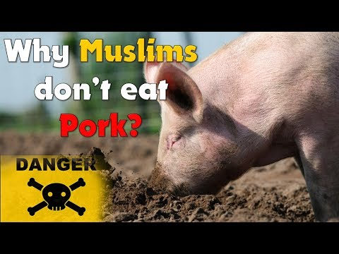 10 reasons why Muslims and Jews don't eat pork