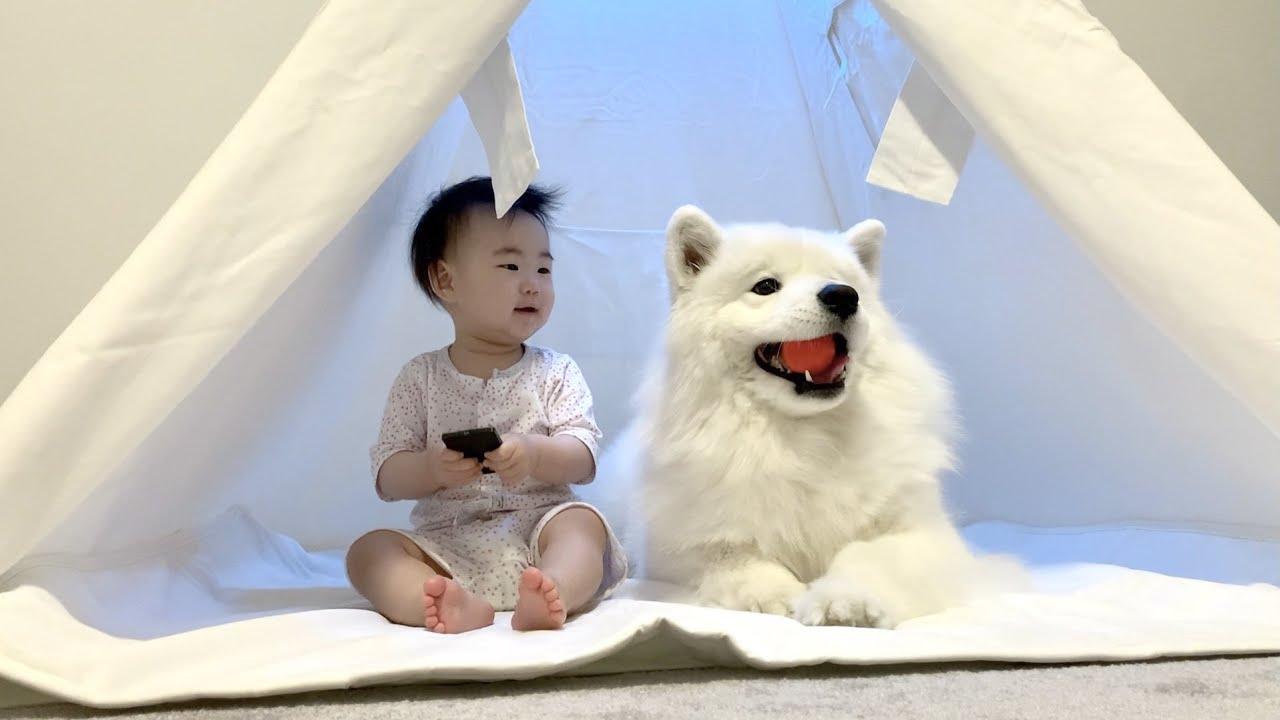언제나 아기이고 싶은 우유