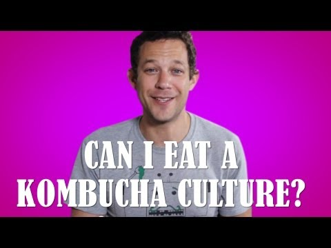 Kombucha - What Exactly Is It and really should You Drink It