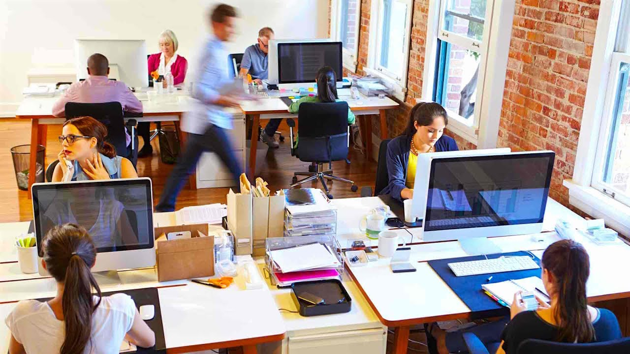 Geliebte 4 Tips to Keep You Sane at the Open Space Office - YouTube @QC_12