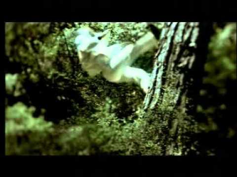DEMİRBANK ORMAN  Video Klip