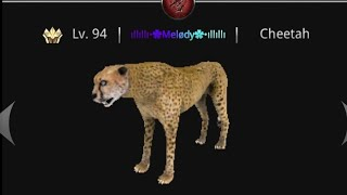 Wild Animals Online - I found a fake me *READ DESC IMPORTANT!!!*