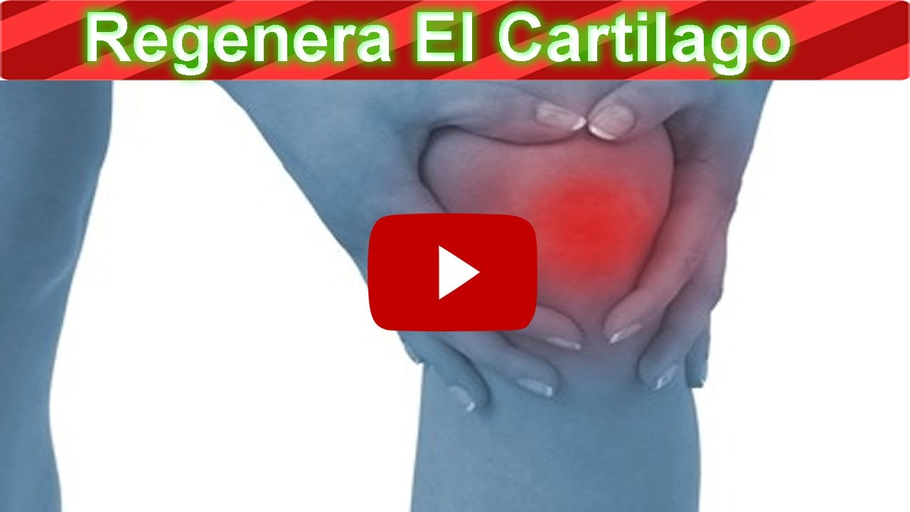 Como curar la artrosis de rodilla con estos alimentos tejido cartilaginoso youtube - Alimentos para mejorar la artrosis ...