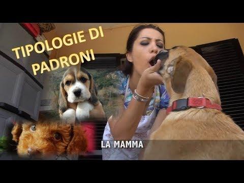 Tipologie di padroni di cani