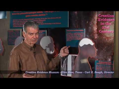 Failed Evolutionary Pre-Human Candidates: Episode 8 - Homo Erectus