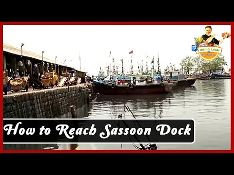 How To Reach Sassoon Dock | Mumbai | AskMe Food Travel Guide