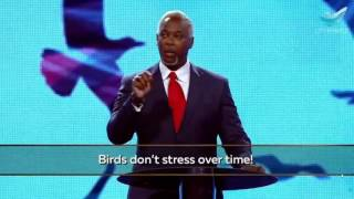 Bishop Dale Bronner :  Look At The Birds