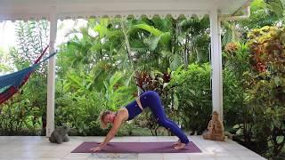 Réveil du corps - Cours de Yoga Vinyasa - Flow Simple - débutants
