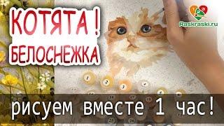 "Растушевка шерсти! 🎨Раскраска по номерам ""Котята"""