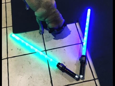 Jedi Pug vs Darth Vader