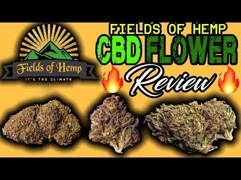 Fields Of Hemp| CBD Hemp Flower Review [ALL STRAINS] - YouTube