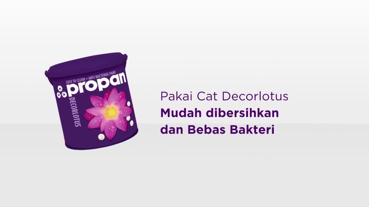 Propan Decorlotus - Cat Mudah Dibersihkan & Bebas Bakteri - YouTube