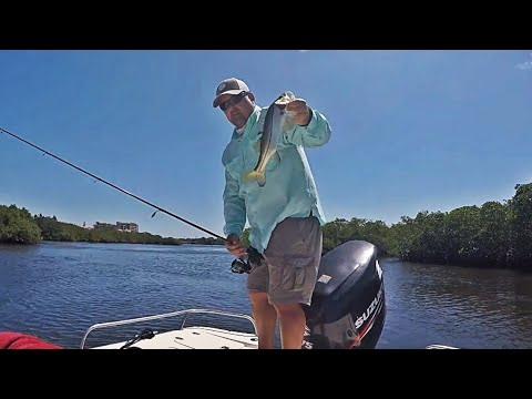 Saltwater Fishing Day 2 - Snook & Redfish - Siesta Key, FL