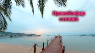 Прямой эфир с пляжа Бан Рак Самуи 2020