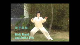 陳式太極 - 發勁 Chen Style Taiji - Act of force exertion (demo)